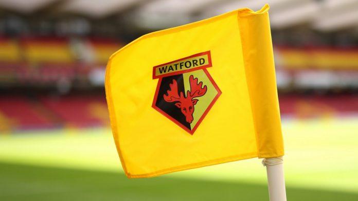 Pemilik Watford : Kita Akan Kembali Ke Liga Premier Inggris